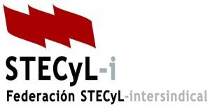 STECyL-i_Federacion_600