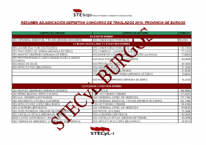 RESUMEN ADJUDICACION SECUNDARIA DEFINITIVO  2015
